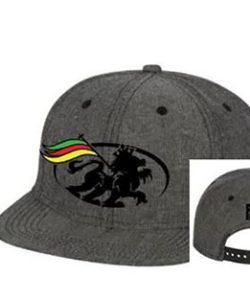 Pono Logo Hat