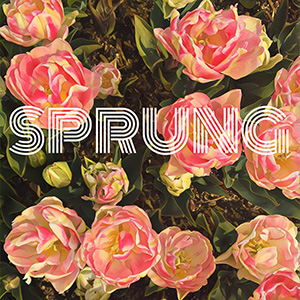 Image for Sprung Pono Beer with painted tulips in pattern